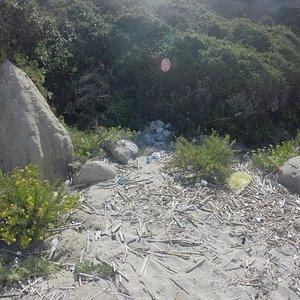 sporcizia sulla spiaggia dell'occhiale