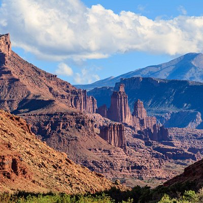 Fisher Towers and La Sal Mountains in the background