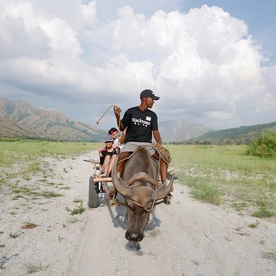 The Grab CARabao that takes you around the scenic volcanic ash fields