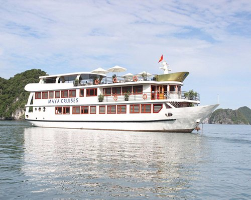 Maya Cruises Overview