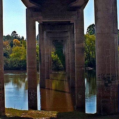 Ponte próxima ao parque.