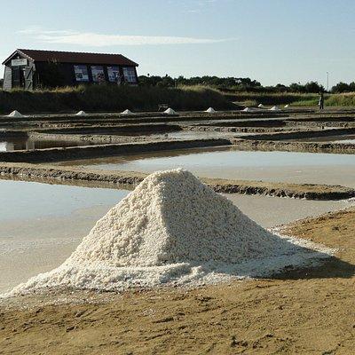 Mulon de gros sel et salorge