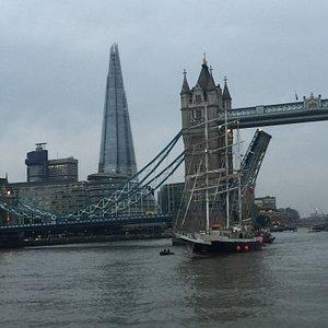 London Riverbus