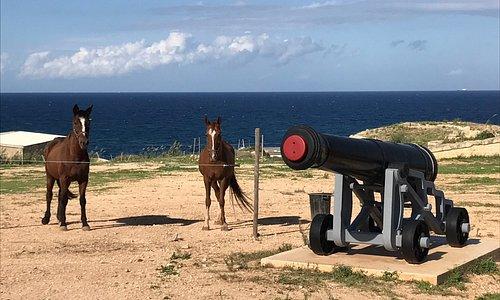 Forte Rinella, Malta