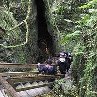 Caveworld