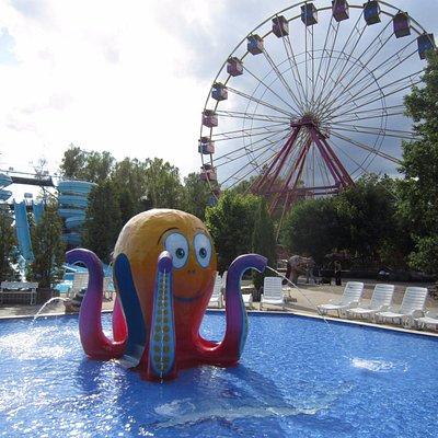 Kom o lek o lär hos oss på Ölands Djur o Nöjespark i sommar  :)  Massor av nyheter