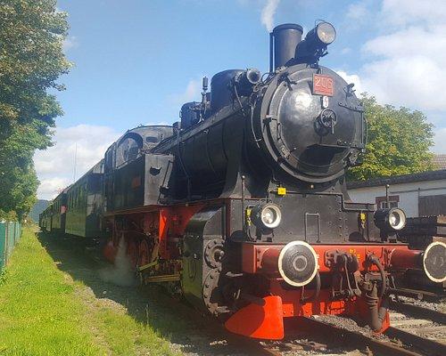 Der Hessencourrier mit der Dampflok 206 im Bahnhof Hoof