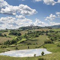 View from Fattoria Poggio Alloro