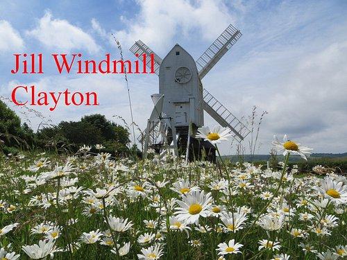 Jill Windmill  www.jillwindmill.org.uk
