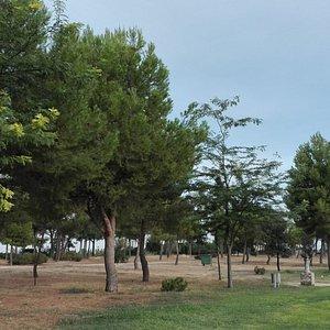 Parque.