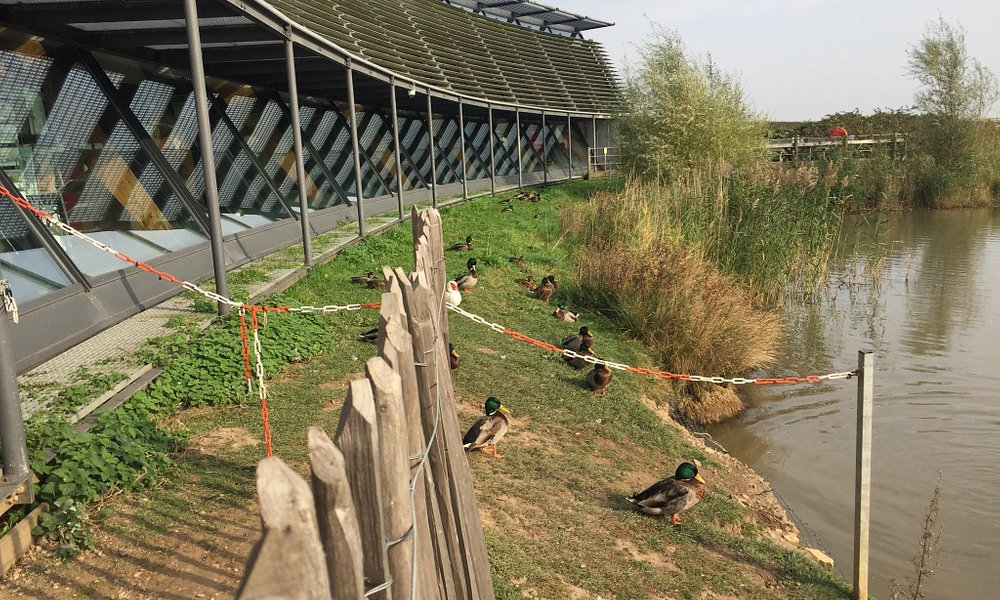 Water's Edge Visitor Centre and Country Park