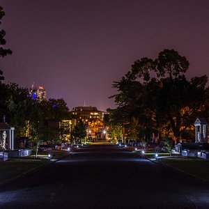 Melbourne General Cemetery, main drive at night