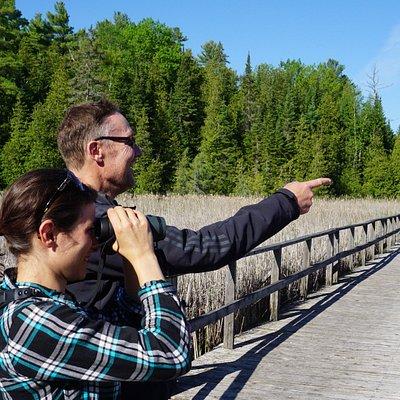 Birders enjoying the view from the Marsh Boardwalk.