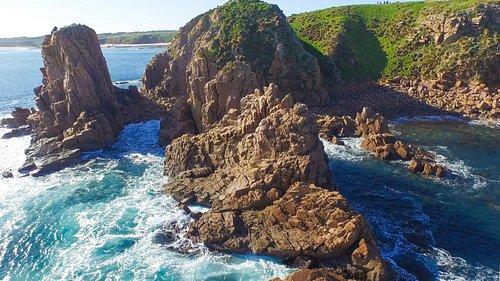 Wild Bass Coast