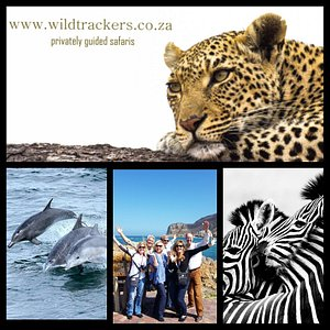 Sights from our guided trips in South Africa