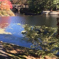 Falls at South Natick: top of the dam