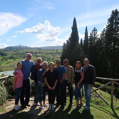 Vineyard in San Gimignano
