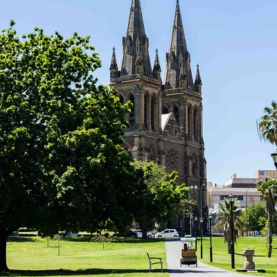 Experience the best of Adelaide in the comfort and style of an EcoCaddy