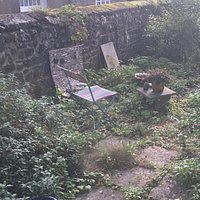The Art garden studios rustic ,organic outdoor space to sit in and take in nature .