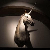 This is Pureza the Unicorn. She represents the possibility of happiness and optimism towards lif