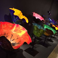 Chihuly Macchia Collection