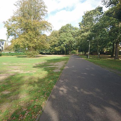 View of the Gaywood Park
