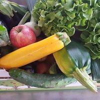Légumes frais et bio - des jardins du Piemont à Cernay