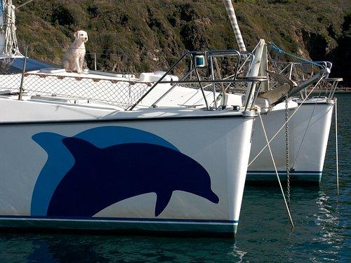 Il nostro logo - la nostra barca - la nostra mascotte.