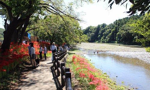 Kinchakuda Manjushage Park