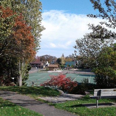 Williams Park as seen from its Pine Street sidewalk border, October 2017.