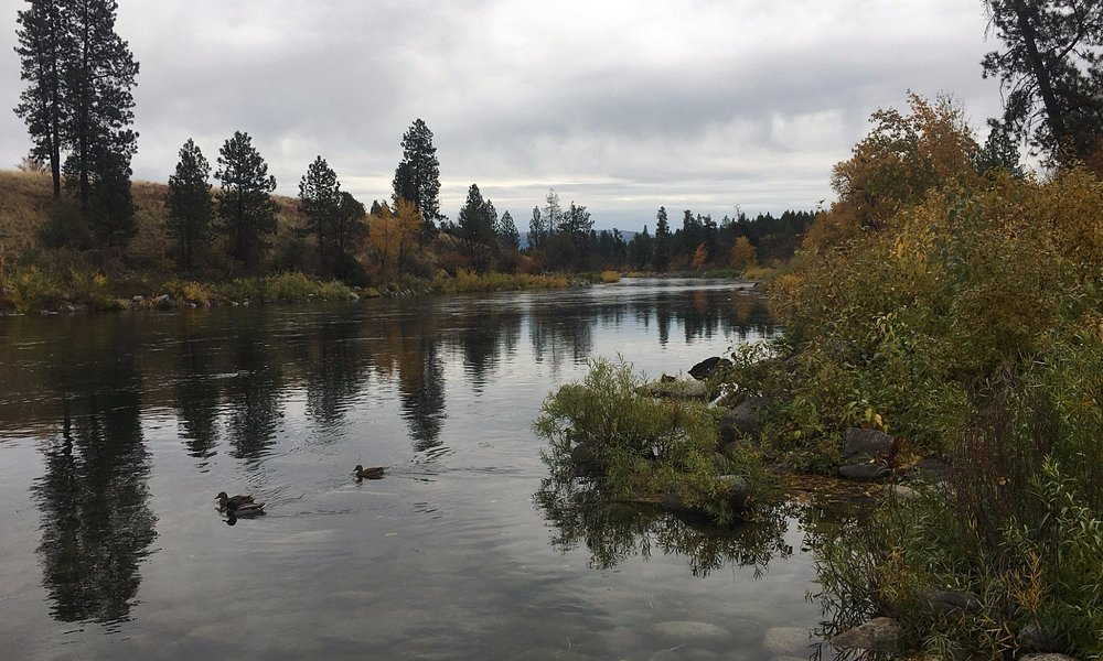 River area.