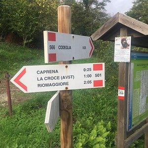 Path 501 from Castè