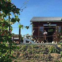 Our restaurant & event space is located on our 5 acre farm.