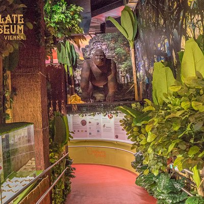 Another part of the museum is the tropical oasis that is the jungle.