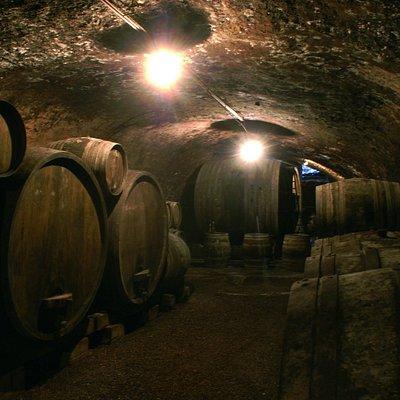 Vieilles caves du 13 ième siècle où Louis Pasteur a fait des expériences