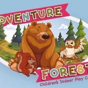 Adventure forest play centre