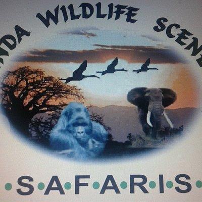Uganda Wildlife Scene