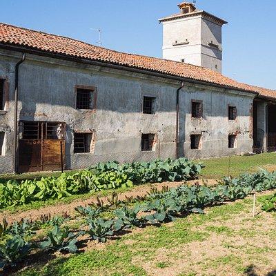 Villa Martinengo.