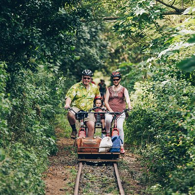 Feel the rythm of the rails as you cruise along through shady forests