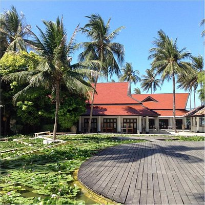Blue Lotus learning center is situated inside the beautiful sustainable Evason Hua Hin resort