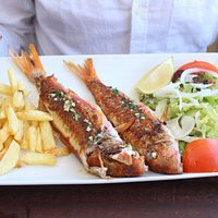 Ca's Patro March Red Mullet