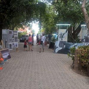 Calle de Arte 16