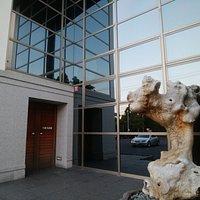 入り口にも古木が展示されていた