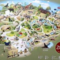 Zoo plan (10-2017)