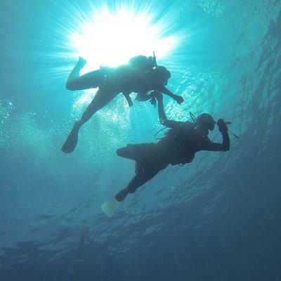 Scuba Diving & Whale shark Explore