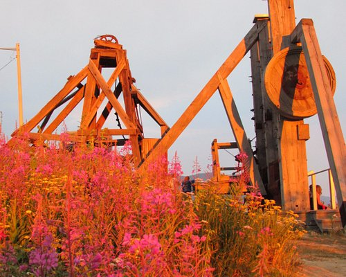 Flowers with the mill.