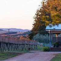 Rowlee cellar door. Photo by Stephen Dwyer