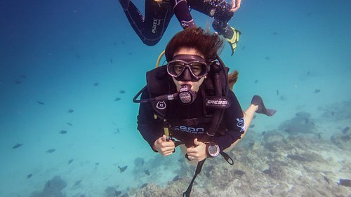 Beginner dives are really fun and stress free because your instructor takes care of everything.