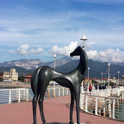 Il cavallino sul pontile di Marina di Massa.