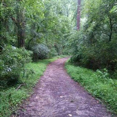 Al Buehler Hiking Trails